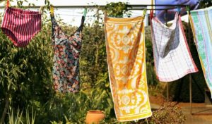 Clothes Line Laundry Wash Clothing