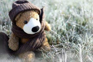 Teddy Teddy Bear Toys