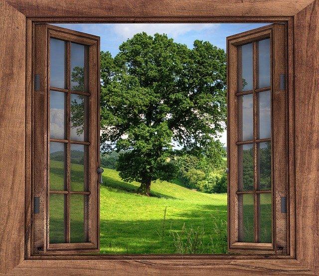 Window View Tree Landscape Season